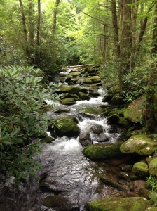 Little River in GSMNP