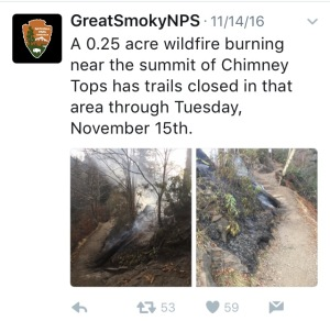 GSMNP tweet - wildfire