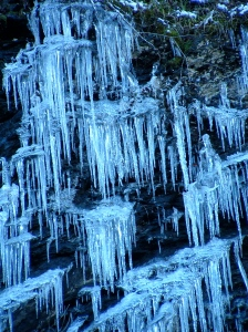 icicles in Great Smoky Mountains National Park