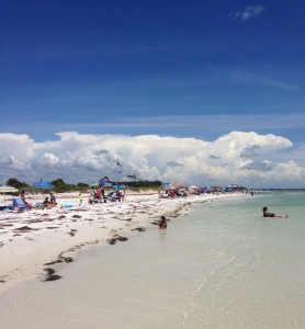 Honeymoon Island State Park - photo by Julie Dodd