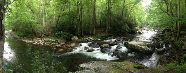 Little River - photo by Julie Dodd