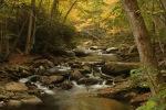 GSMNP Little River - Photo by Julie Dodd