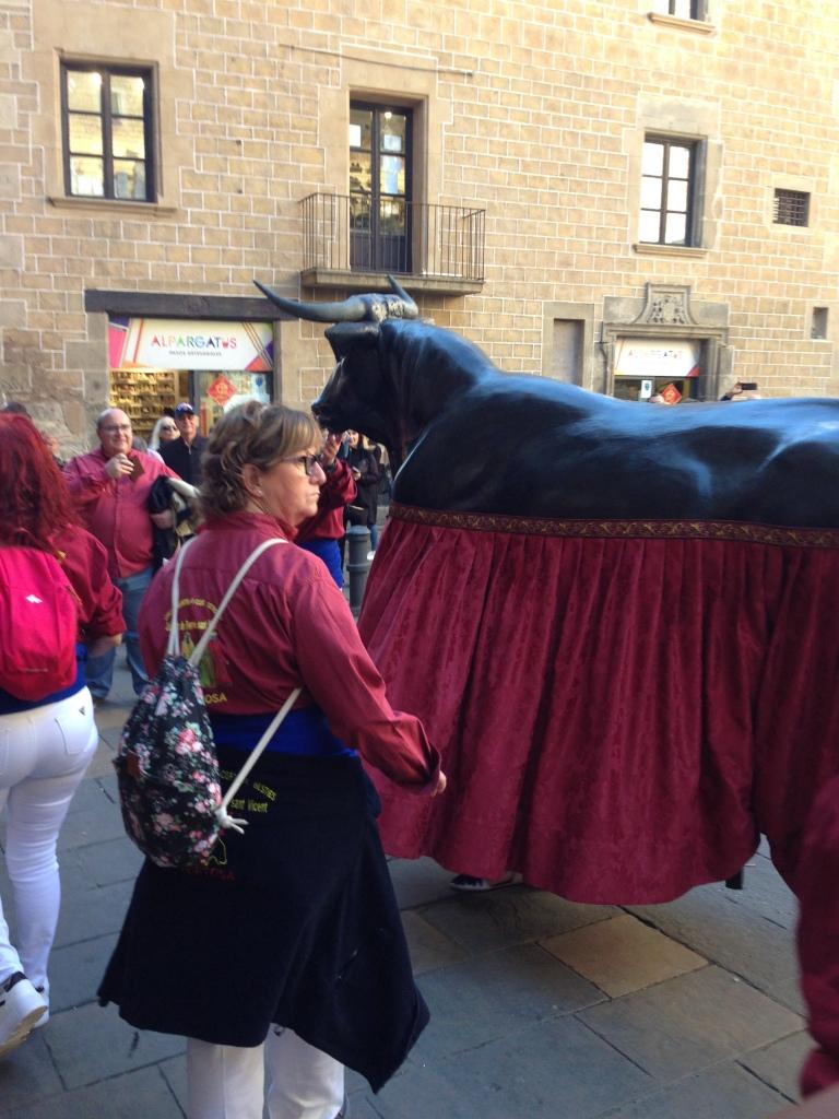 Bull in Festes de San Jose Oriol